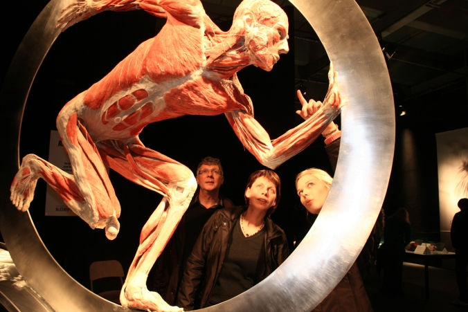 Body Worlds Vital 2. Credit- Body Worlds (1)