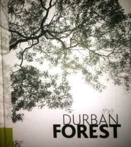 durban-forest-1