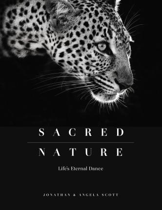 sacred-nature-2