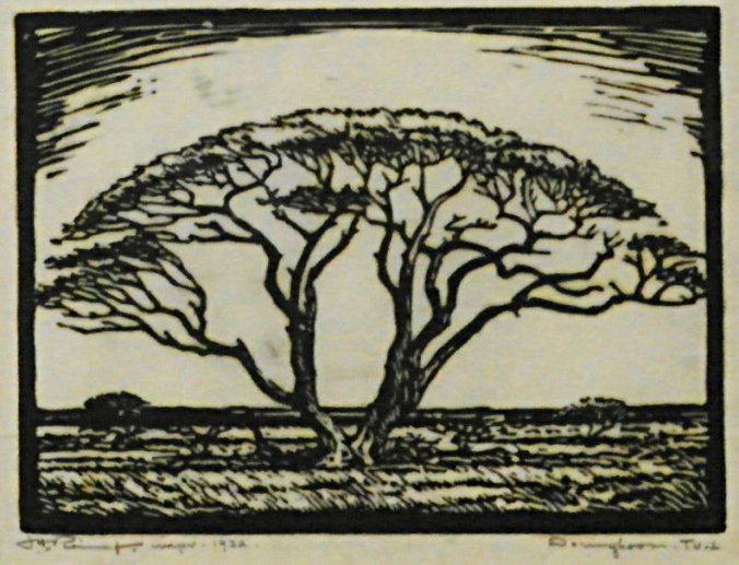 Jacob Hendrik Pierneef 'Doringboom Tvl' woodcut
